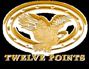TwelvePoints